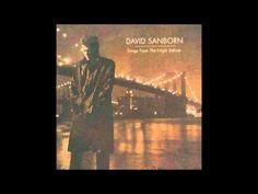 David Sanborn Rikke