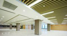 Linear Open Batten Ceiling: Hunter Douglas Contract at Nanjing Metro Line 3