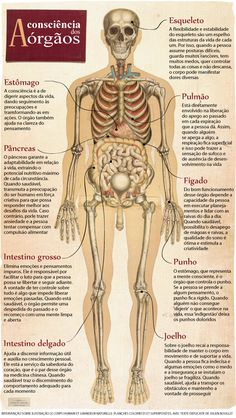 BodyTalk: terapia alternativa baseada na escuta do corpo cresce no Brasil | Saúde Plena Acupuncture, Ayurveda, Medical Anatomy, Human Anatomy And Physiology, Body Anatomy, Body Is A Temple, Medical Students, Natural Medicine, Greys Anatomy