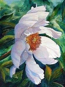 White Wonder by Karen Mattson . my cousin bruce's wife!