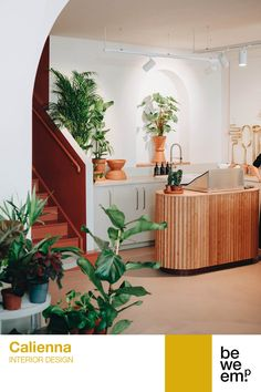 """""""When you look after a plant, you're also looking after yourself"""" – that is the idea behind Calienna, a concept store in Vienna's Neubaugasse. Calienna's main focus is plants, but it also carries selected books and design products. The store spans 300 square metres across two floors, with the main sales area on the ground floor and an exhibition space on the upper floor. Look After Yourself, Exhibition Space, Design Products, Ground Floor, Second Floor, Vienna, Floors, Concept, Interior Design"""