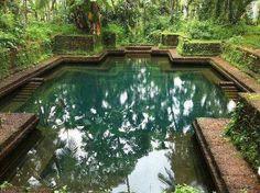 Temple pond... (Kannur, Kerala)