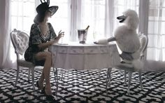 Poodle perfect!