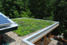 Extensive green roof on the upper roof of this home is planted with sedums and other succulents.  green roof design consultation and installation provided by Living Roofs, Inc.