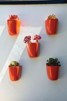 Bright orange wall-mounted fiberglass DL Domino planters, designed by Malcolm Leland, were purchased from architecturalpottery.com.