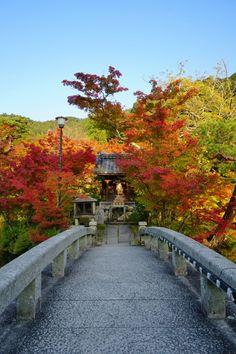 Kyoto, Eikando Temple