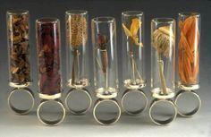 "Anika Smulovitz - Herbarium Specimen Rings  ""Herbarium Specimen Rings  2002sterling silver, glass"