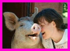 VEGANISM: A TRUTH WHOSE TIME HAS COME: 30 second lesson on HOW TO TREAT A PIG!