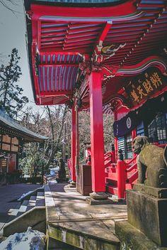 visiter tokyo une semaine guide par jour par quartier kichijoji parc japon asie blog voyage photographie