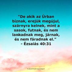 Positive Affirmations, Bible Verses, Spirituality, Positivity, Future, Future Tense, Spiritual, Scripture Verses, Bible Scripture Quotes