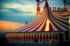 Afbeeldingsresultaat voor circus