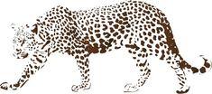 Dzikie koty 13 - Leopard