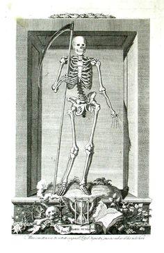 Memento Mori Art, Skeleton Drawings, The Lovely Bones, Dance Of Death, Horror Posters, Danse Macabre, Occult Art, Illusion Art, Medieval Art