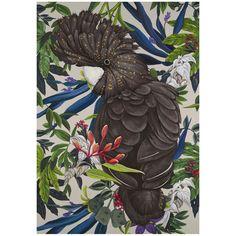 Wall Art, Prints & Canvases - Australia Wide, Online + In-store! Oz Design Furniture, Big Bird, Cockatoo, Beautiful Artwork, Folk Art, Art Decor, Art Photography, Street Art, Art Pieces
