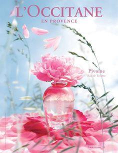 L'Occitane flower - Google 검색