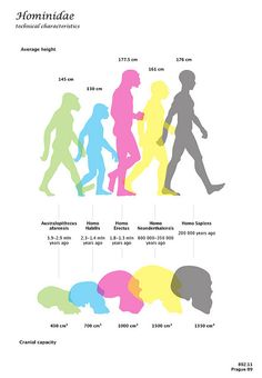NEANDERTALS NEEDED LARGER BRAINS THAN WE HAVE. Society and computers do much of our thinking for us.