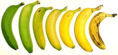 De banaan is één van de populairste fruitsoorten ter wereld. Bananen zijn makkelijk mee te nemen en te eten, waardoor ze perfect zijn als snack voor onderweg. Ze zijn ook behoorlijk voedzaam en bevatten hoge gehaltes aan vezels en antioxidanten. Veel mensen twijfelen echter aan de gezondheidswaarde van bananen omdat er veel suiker en koolhydraten …
