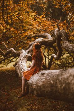 A Grand Old Chestnut - A Clothes Horse Source by preludefreak clothes ideas Fantasy Photography, Autumn Photography, Artistic Photography, Photography Poses, Whimsical Photography, Fox Collection, Book 15 Anos, Conkers, Chestnut Horse