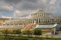 palm greenhouse in botanical garden Copenhagen, Denmark  Hans Couwenbergh Photography