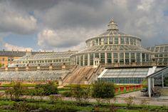 palm greenhouse in botanical garden Copenhagen, Denmark  Hans Couwenbergh Photography