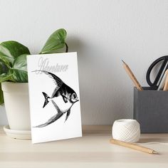'Adventurer The Fish' Art Board Print by Beer-Bones Fish Art, Adventurer, Art Boards, Bones, Art Prints, Printed, Awesome, Products, Art Impressions