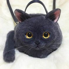 Here are the Cat Bags, some too realistic handbags shaped as cats! These adorable plush cats are indeed handbags, handcrafted by Japanese designer Pico. Cat Purse, Cat Bag, Handmade Handbags, Vintage Handbags, Crazy Cat Lady, Crazy Cats, Burberry Handbags, Leather Handbags, Japan Fashion