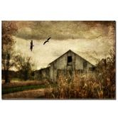 """Found it at Wayfair - Wings of Change by Lois Bryan, Canvas Art  - 22""""  x 32"""""""