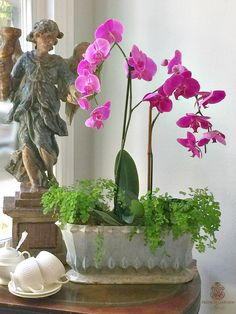 HOW TO CREATE A DESIGNER ORCHID ARRANGEMENT