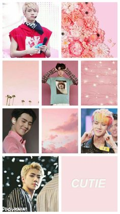 Sehun, Wallpapers, Celebrities, Link, Celebs, Wallpaper, Foreign Celebrities, Celebrity, Famous People
