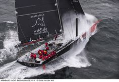 Photo by Onne van der Wal - Comanche, a 100 ft sloop, was built by Hodgdon yachts in Maine for Jim Clark and campaigned by Ken Read, president of No...