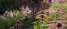 Berkshire Garden | Tom Stuart-Smith - Photo: © Andrew Lawson