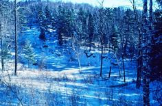 These 19 Wisconsin Natural Wonders May Be Even More Beautiful in Winter