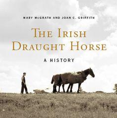 The Irish Draught Horse