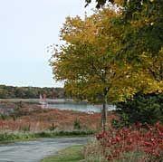 Webb Memorial State Park - Weymouth, MA