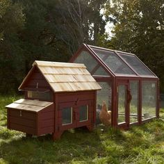 Briar Extended Chicken Coop & Run | Williams-Sonoma |  Raising chickens ensures a steady supply of fresh, nutritious organic eggs free of antibiotics, hormones and other unnatural additives.