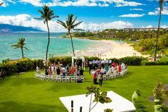 Oceanfront Lawn: Picture Perfect Wedding Day