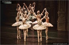 The Sleeping Beauty – Tchaikovsky Ballet at the Detroit Opera House  www.arisingimages.com