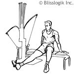 Looking for a Permanent Remedy for Bow Legs - Without the Need for Surgery? Read on to discover exactly what you need to do to fix your bow legs once and for all, and enjoy perfectly straight and attractive legs for the rest of your life! Boflex Workouts, Exercises, Bow Legged Correction, Workout Routines For Beginners, Workout Ideas, 20 Minute Workout, Leg Press, Calf Muscles