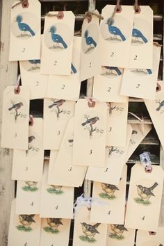 escort cards for tables designed after various birds // photo by AshleyRosePhotography.com