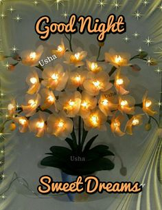 Good Evening Messages, Good Evening Wishes, Good Night Wishes, Good Night Sweet Dreams, Good Night Quotes, Good Night Msg, Goodnight Quotes For Her, Good Morning Gif Images, Good Night Flowers
