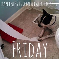 happiness is a friday