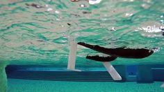 Drone aquatique  Parrot MiniDrones - Hydrofoil