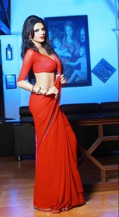 Sherlyn Chopra's controversial photos