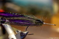 Fly Tying Step By Step | The One Fly
