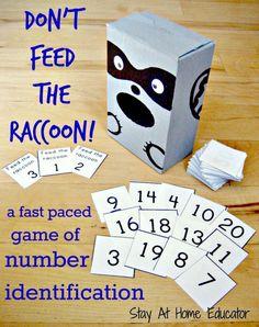 Don't Feed The Raccoon