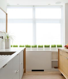 Tvarkingas minimalistinio stiliaus virtuvės interjeras | Domus galerija  #domusgalerija #interjeroidejos #scandinavian #minimalizmas
