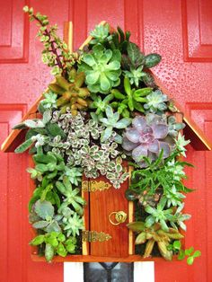"""Succulent Living House """"Green Home"""" Hang or Stand Centerpiece Perfect Unique Gift and Home Decor. $89.00, via Etsy."""
