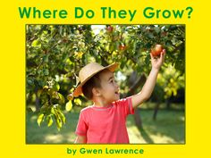 The next time you are with your children in the grocery store or kitchen, invite them to wonder where the produce has come from. You will set the stage for a great conversation when you read Where Do They Grow, and that can lead you to exploring other foods or planting a garden!