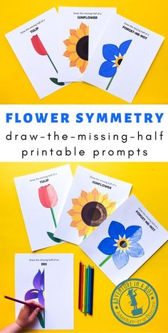 Use flower symmetry as a way to explain symmetry to children, then create beautiful symmetrical flower drawings with these printable draw-the-missing-half STEM art prompts! Flower Activities For Kids, Symmetry Activities, Creative Activities For Kids, Kids Learning Activities, Stem Activities, Spring Activities, Creative Kids, Stem For Kids, Art For Kids