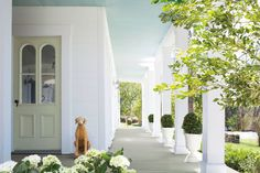 1000 images about l exterior paint colours l on pinterest How to ward off bad spirits from your home